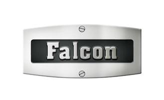 bmjohnson-_0013_falcon